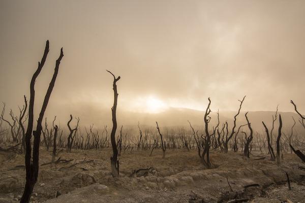Comment photographier le brouillard