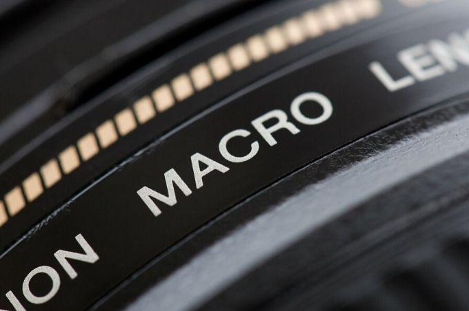 Ce que vous devez savoir sur la photographie macro